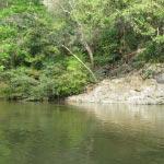 Foto de Piedras, Tolima