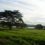 Foto de Luruaco, Atlántico