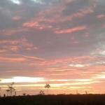 Foto de Calamar, Guaviare