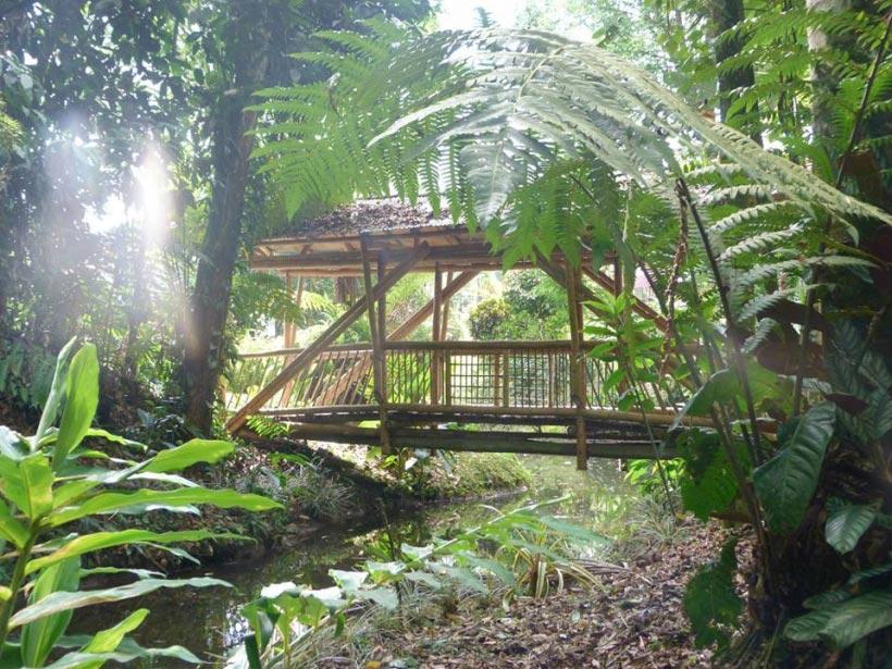 Foto de marsella risaralda - Jardines puente cultural ...