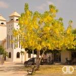 Foto de San Juan De Betulia, Sucre